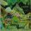Tolkien : Roverandom (in English) – HB 5212